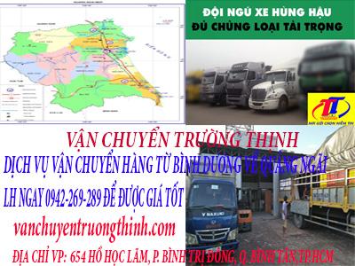 dich-vu-van-chuyen-hang-tu-binh-duomng-di-quang-ngai-truong-thinh